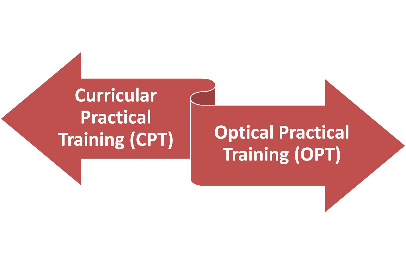 OPT và CPT khác nhau như thế nào?